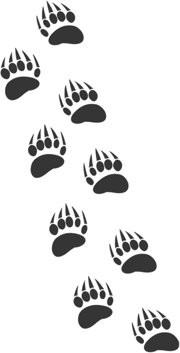 graphic of bear paw tracks